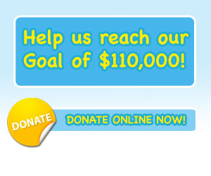 Donate online now!